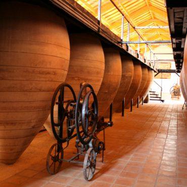 Museo del Vino de Valdepeñas | Turismo Valdepeñas