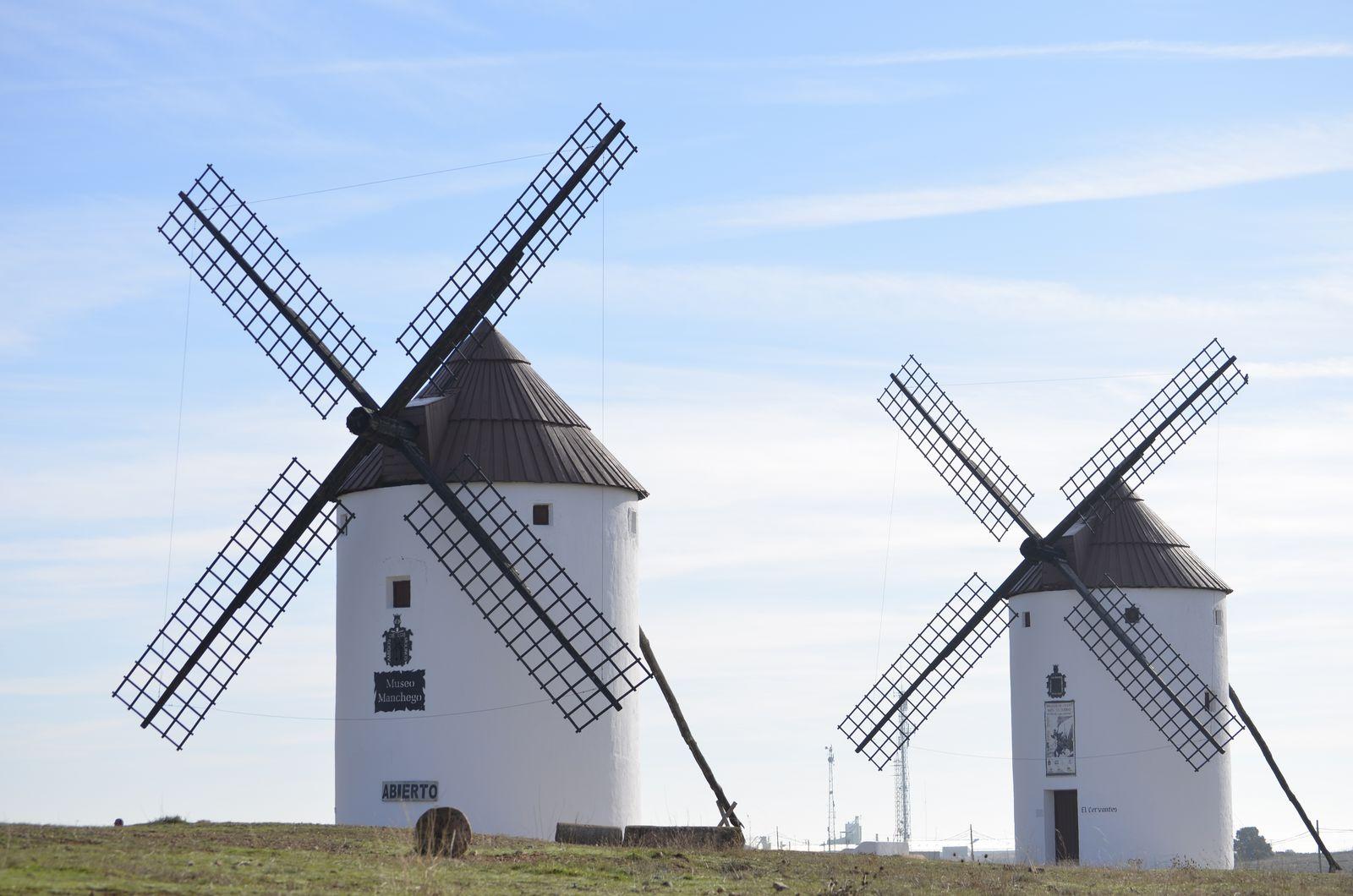 Ruta del Vino de La Mancha | Turismo Mota del Cuervo