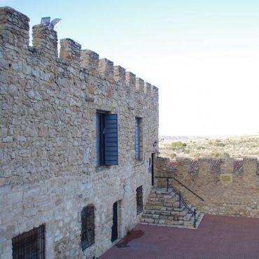 ruta-de-los-castillos-de-castilla-la-mancha-ruta-del-vino-de-la-manchuela-enoturismo-que-ver-en-carcelen-turismo-8