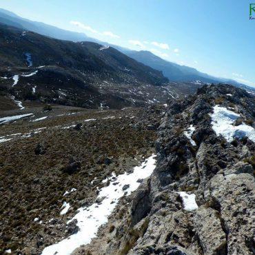 Vinos Castilla la Mancha   Turismo Rioparino-de-jumilla-4