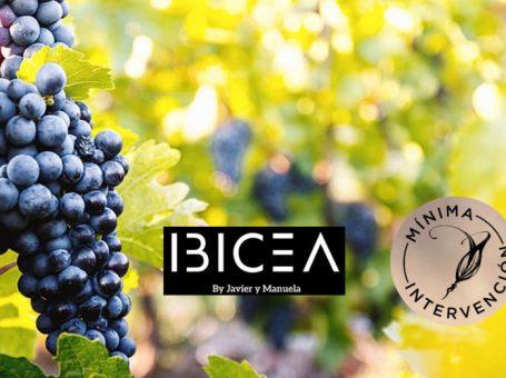 Bodegas Ibicea