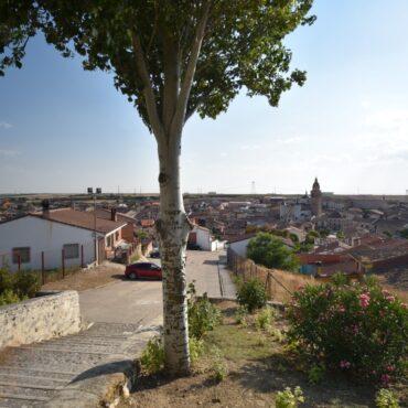 ruta-del-vino-de-rueda-enoturismo-en-castilla-y-leon-turismo-rueda-8