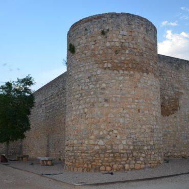 ruta-del-vino-de-toro-enoturismo-en-castilla-y-leon-turismo-zamora-que-ver-en-toro-alcazar-6