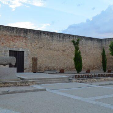 ruta-del-vino-de-toro-enoturismo-en-castilla-y-leon-turismo-zamora-que-ver-en-toro-alcazar-7