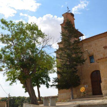 Ruta del Vino de Toro   Enoturismo en Castilla y León